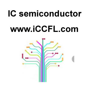 Semiconductor Chip IC